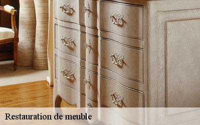 Restauration de meuble  06320